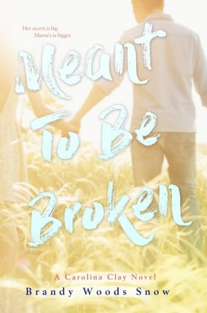Meant To Be Broken By Brandy Woods Snow book cover