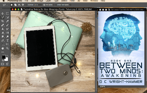 Photoshop for Book Bloggers Selection Tools
