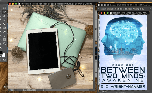 Photoshop tutorial for book blogging selected images side by side