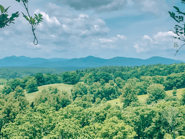 11 Reasons Why We Are Moving To Asheville North Carolina
